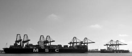 DSC_0259