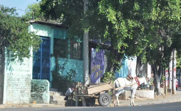 Managua2009+346